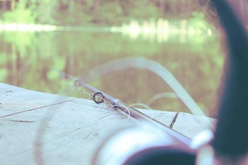 Regarder le film de la particularité de la pêche nationale à en ligne